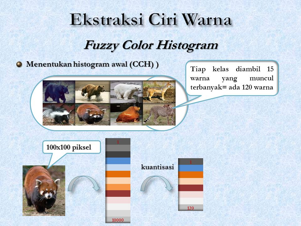 Ekstraksi Ciri Warna Fuzzy Color Histogram