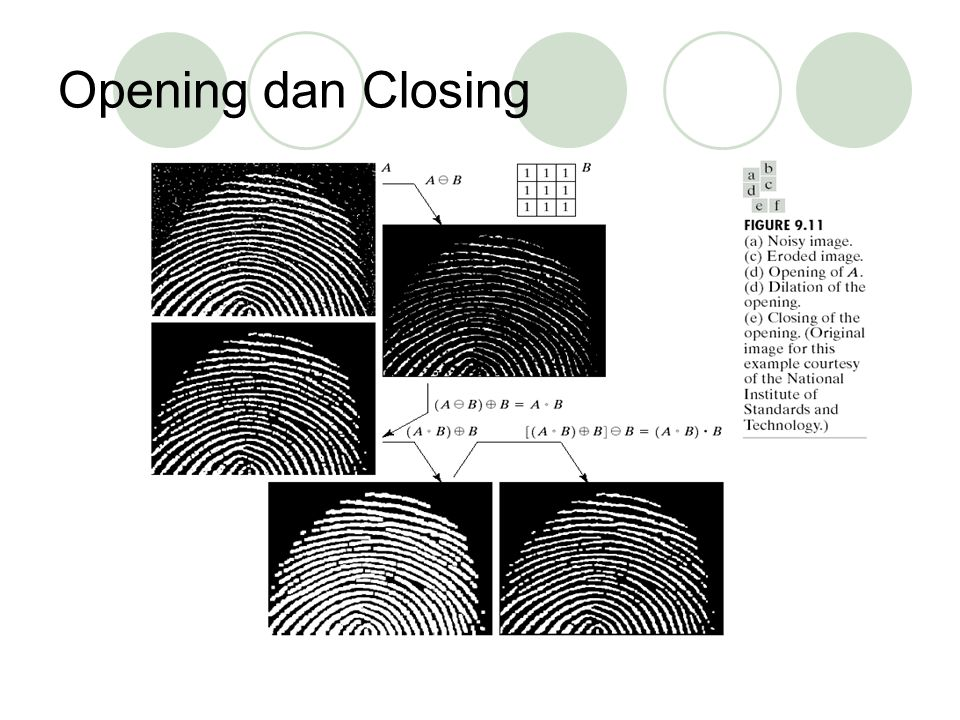 Opening dan Closing