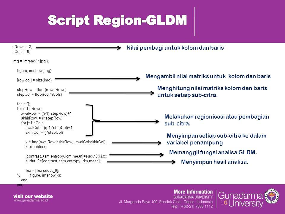 Script Region-GLDM Nilai pembagi untuk kolom dan baris