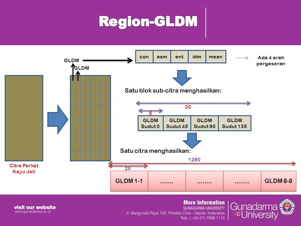 Region-GLDM con. asm. ent. idm. mean. Ada 4 arah pergeseran. GLDM. GLDM. Satu blok sub-citra menghasilkan: