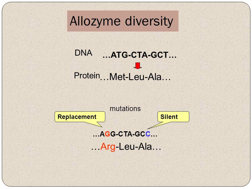 Allozyme diversity …Met-Leu-Ala… …Arg-Leu-Ala… DNA …ATG-CTA-GCT…