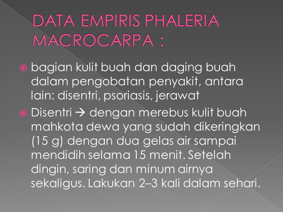DATA EMPIRIS PHALERIA MACROCARPA :