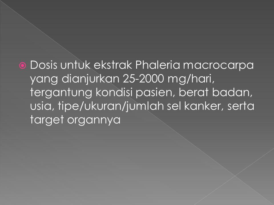 Dosis untuk ekstrak Phaleria macrocarpa yang dianjurkan 25-2000 mg/hari, tergantung kondisi pasien, berat badan, usia, tipe/ukuran/jumlah sel kanker, serta target organnya
