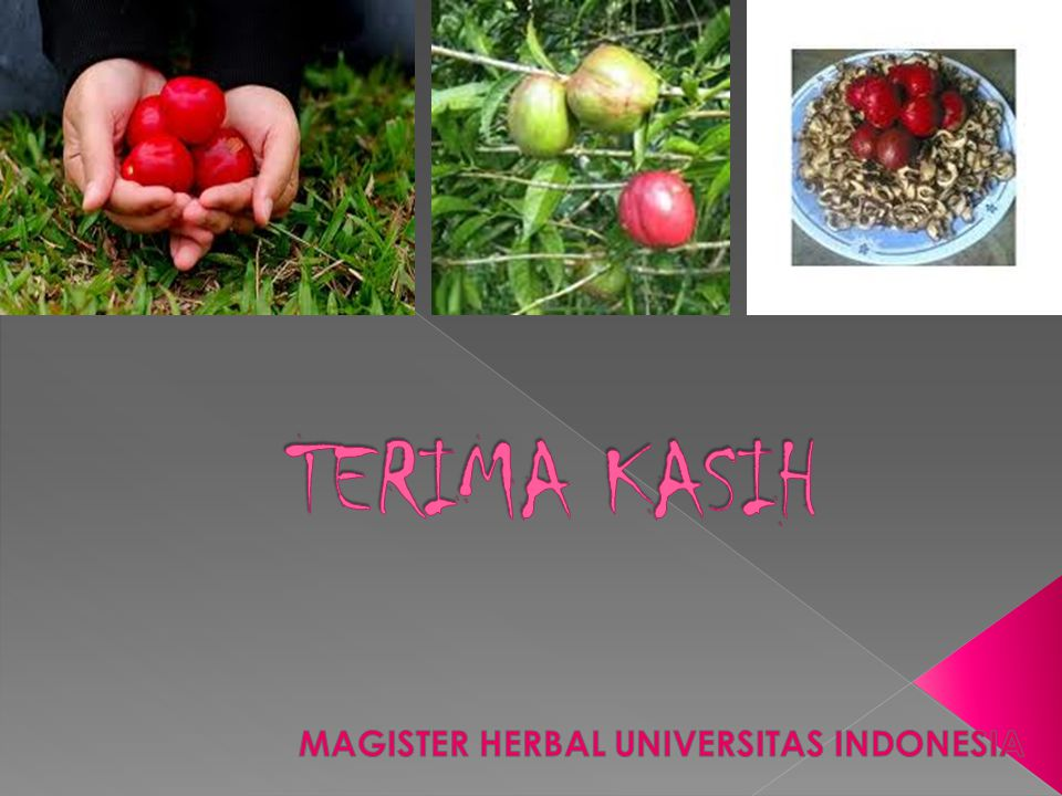 MAGISTER HERBAL UNIVERSITAS INDONESIA