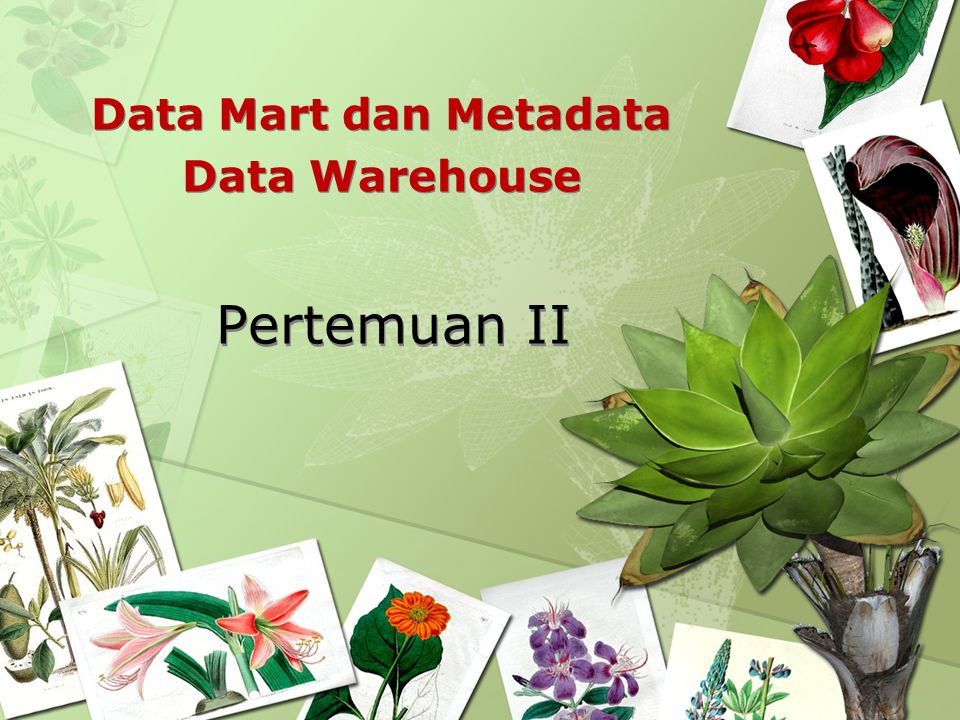 Data Mart dan Metadata Data Warehouse