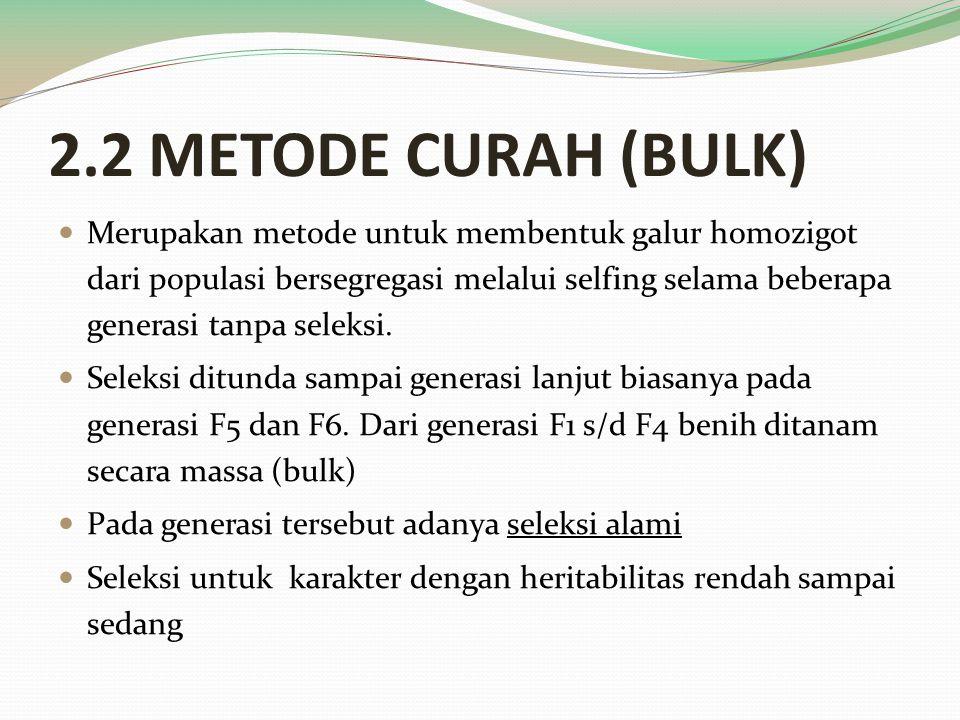 2.2 METODE CURAH (BULK)