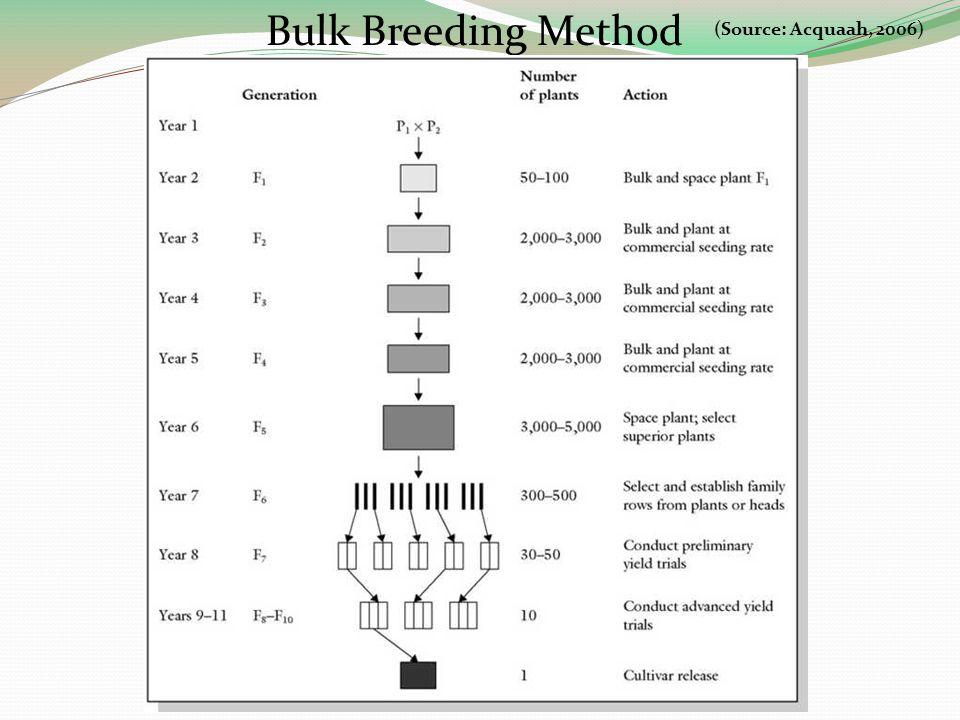Bulk Breeding Method (Source: Acquaah, 2006)