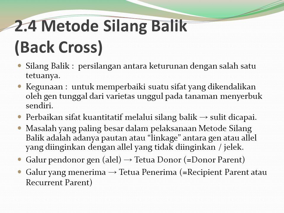 2.4 Metode Silang Balik (Back Cross)
