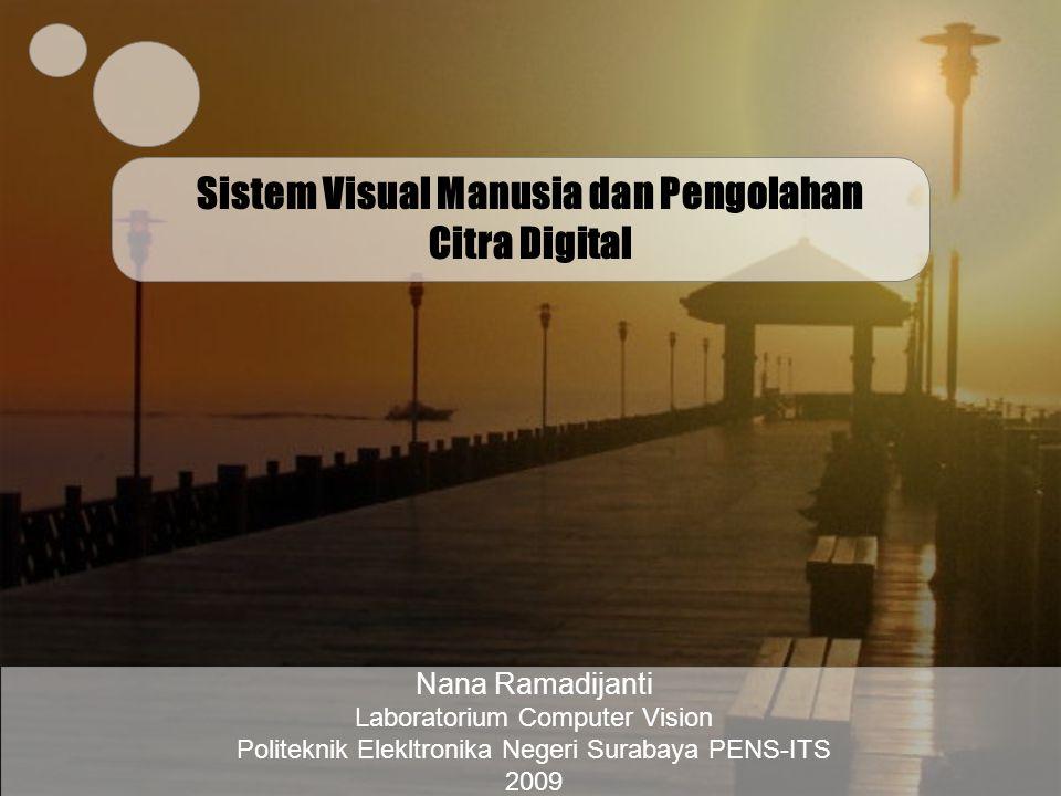 Sistem Visual Manusia dan Pengolahan Citra Digital
