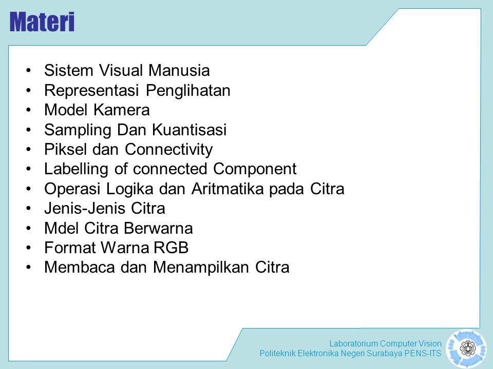 Materi Sistem Visual Manusia Representasi Penglihatan Model Kamera