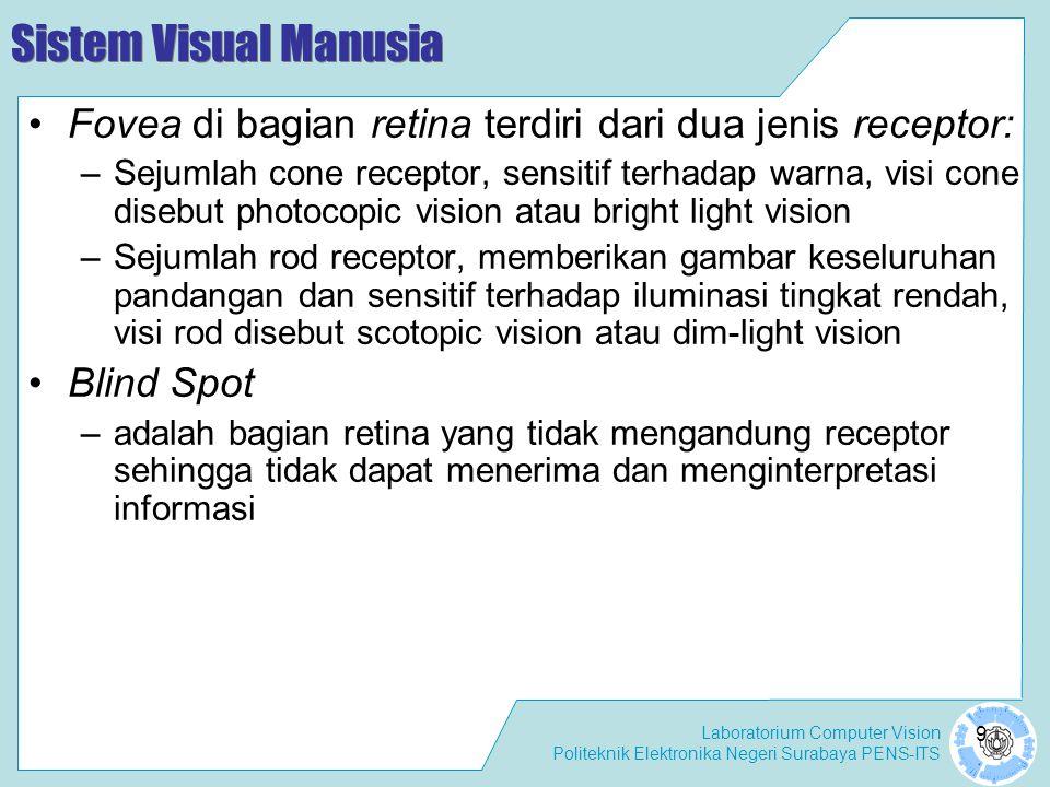 Sistem Visual Manusia Fovea di bagian retina terdiri dari dua jenis receptor: