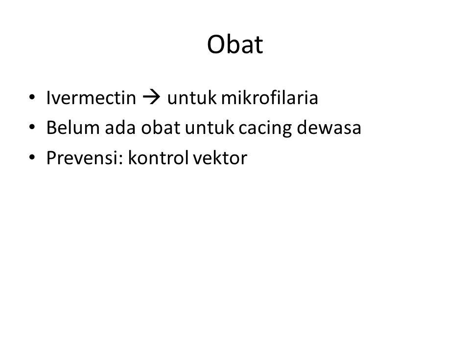 Obat Ivermectin  untuk mikrofilaria