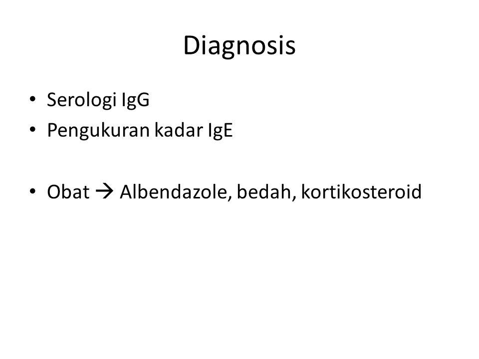 Diagnosis Serologi IgG Pengukuran kadar IgE