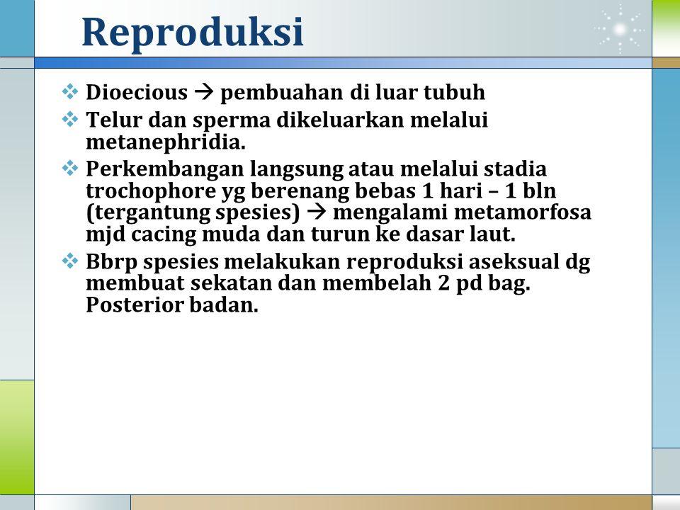 Reproduksi Dioecious  pembuahan di luar tubuh