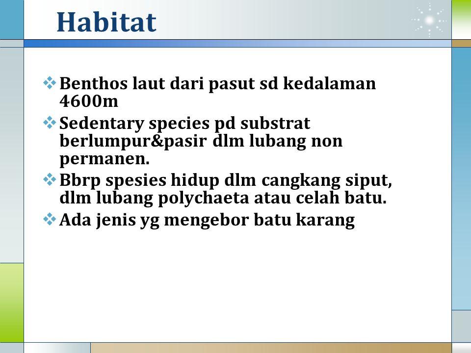 Habitat Benthos laut dari pasut sd kedalaman 4600m