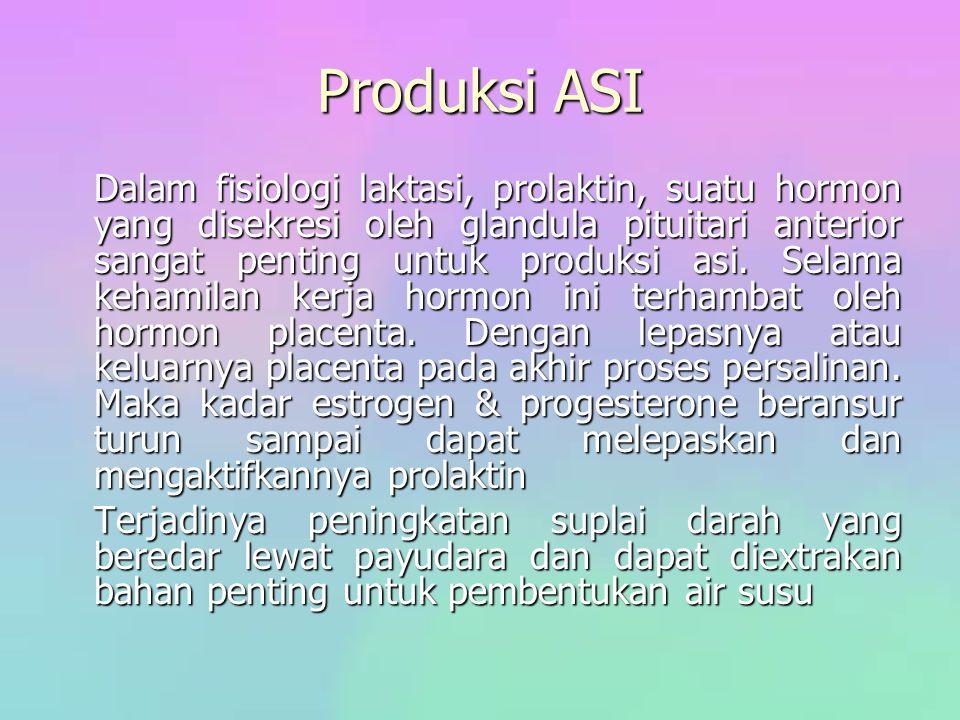 Produksi ASI