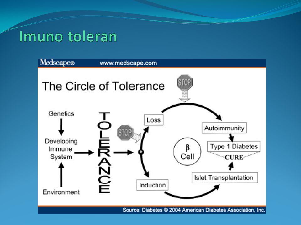 Imuno toleran