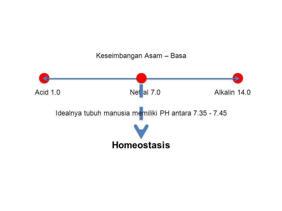 Homeostasis Keseimbangan Asam – Basa Acid 1.0 Netral 7.0 Alkalin 14.0