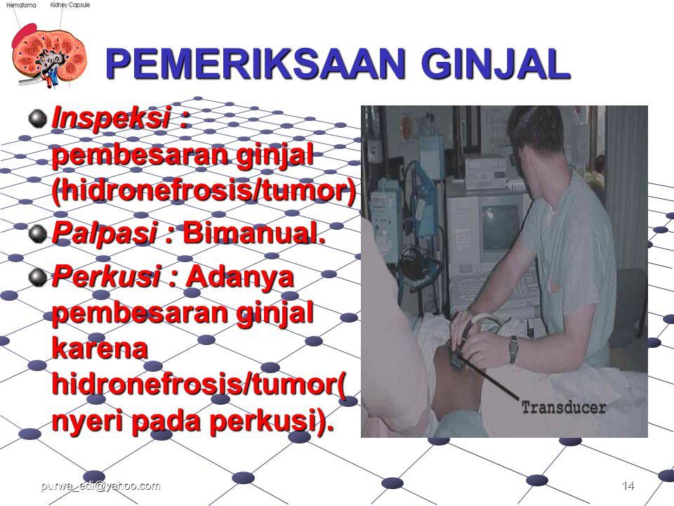 PEMERIKSAAN GINJAL Inspeksi : pembesaran ginjal (hidronefrosis/tumor)