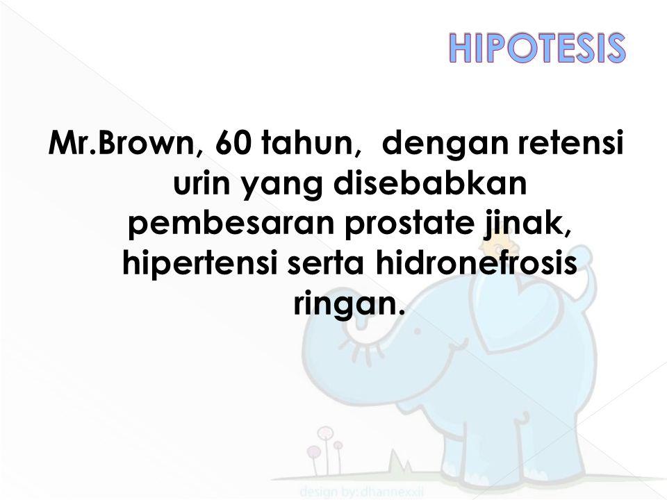 HIPOTESIS Mr.Brown, 60 tahun, dengan retensi urin yang disebabkan pembesaran prostate jinak, hipertensi serta hidronefrosis ringan.