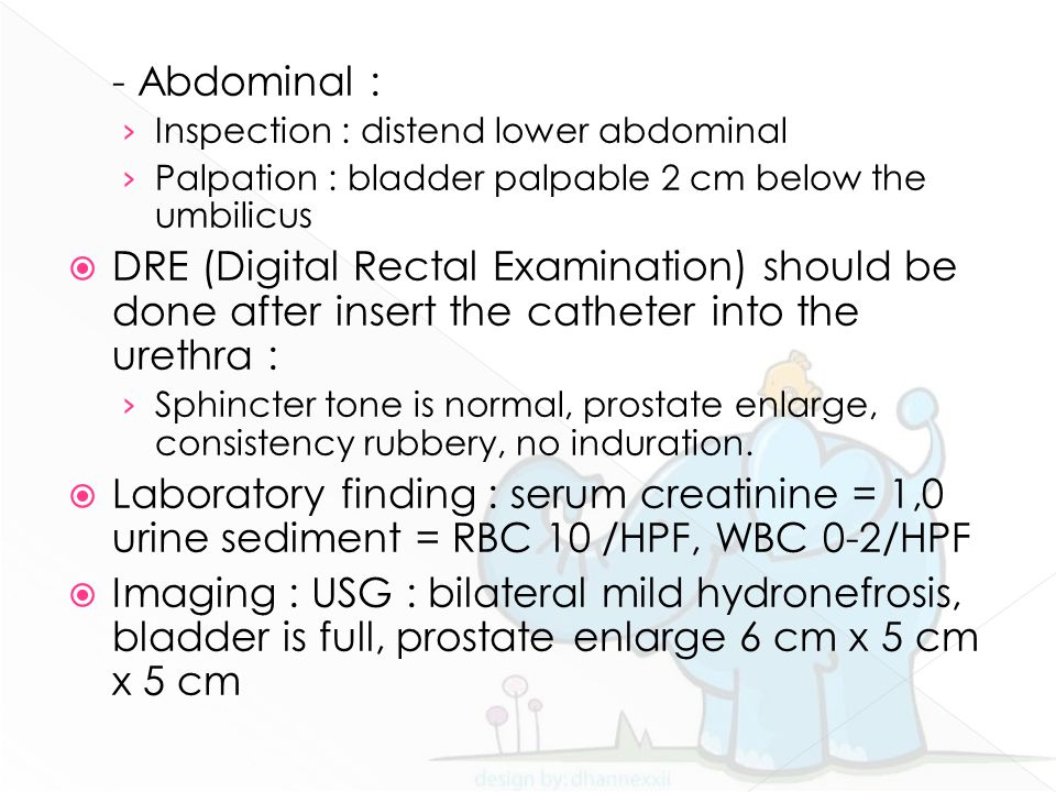 - Abdominal : Inspection : distend lower abdominal. Palpation : bladder palpable 2 cm below the umbilicus.