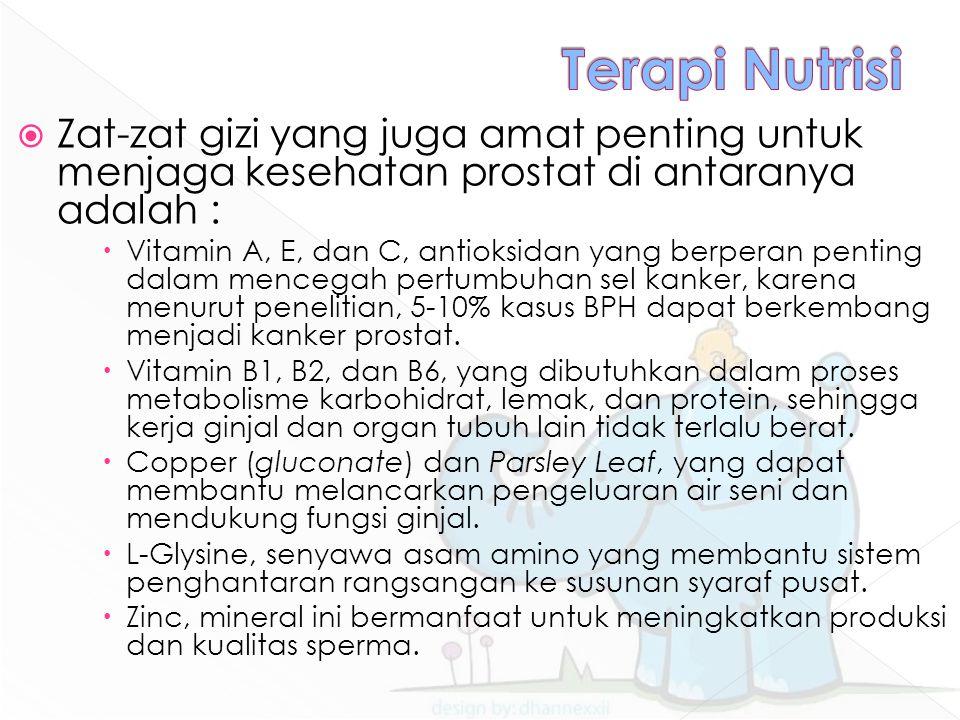 Terapi Nutrisi Zat-zat gizi yang juga amat penting untuk menjaga kesehatan prostat di antaranya adalah :