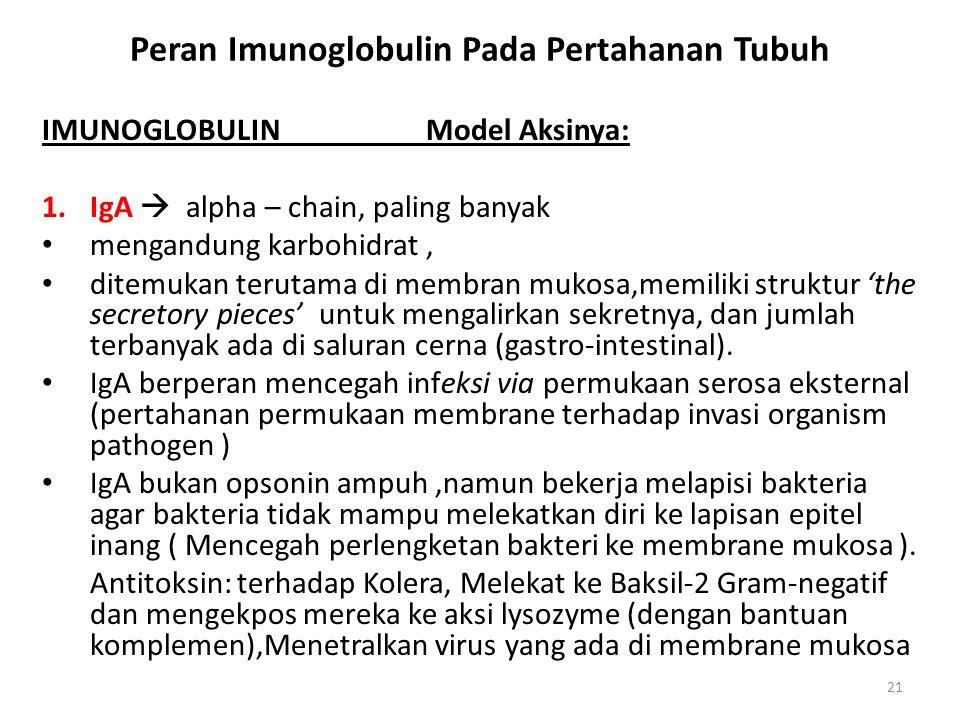 Peran Imunoglobulin Pada Pertahanan Tubuh