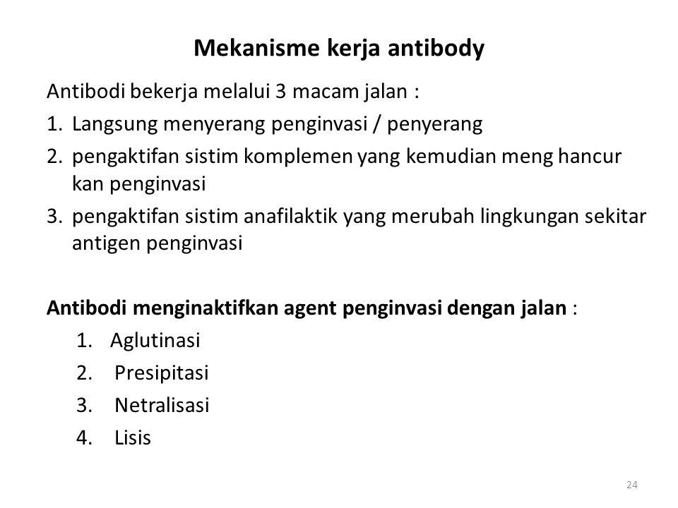 Mekanisme kerja antibody