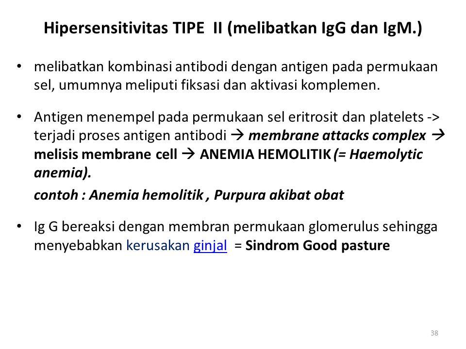 Hipersensitivitas TIPE II (melibatkan IgG dan IgM.)