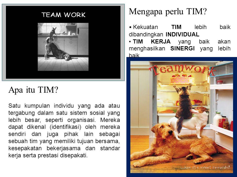 Mengapa perlu TIM Apa itu TIM