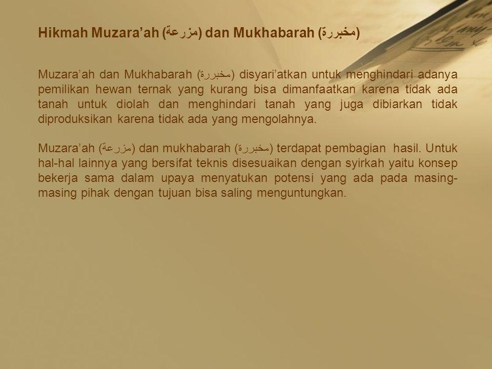 Hikmah Muzara'ah (مزرعة) dan Mukhabarah (مخبررة)