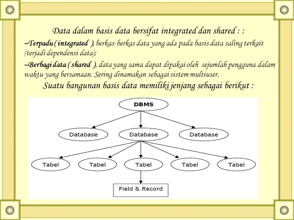 Data dalam basis data bersifat integrated dan shared : :