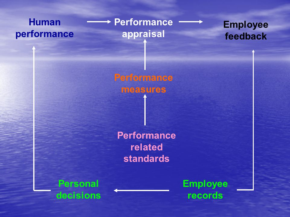 Human performance Performance. appraisal. Employee feedback. Performance. measures. Performance related.