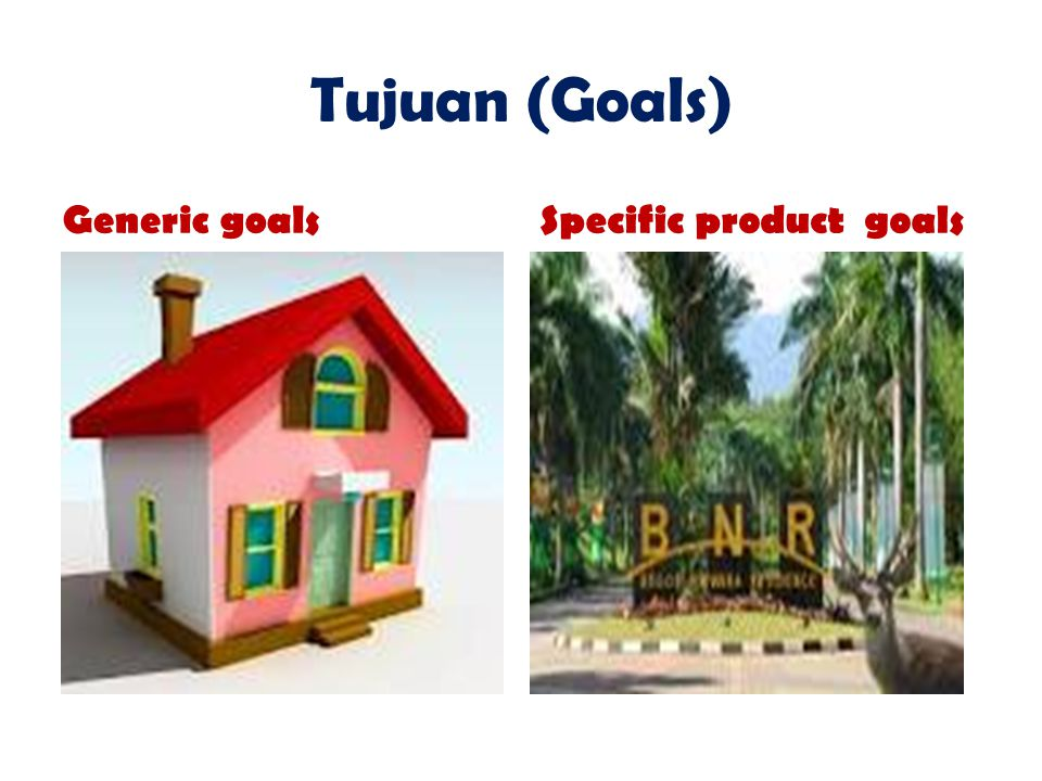 Tujuan (Goals) Generic goals Specific product goals