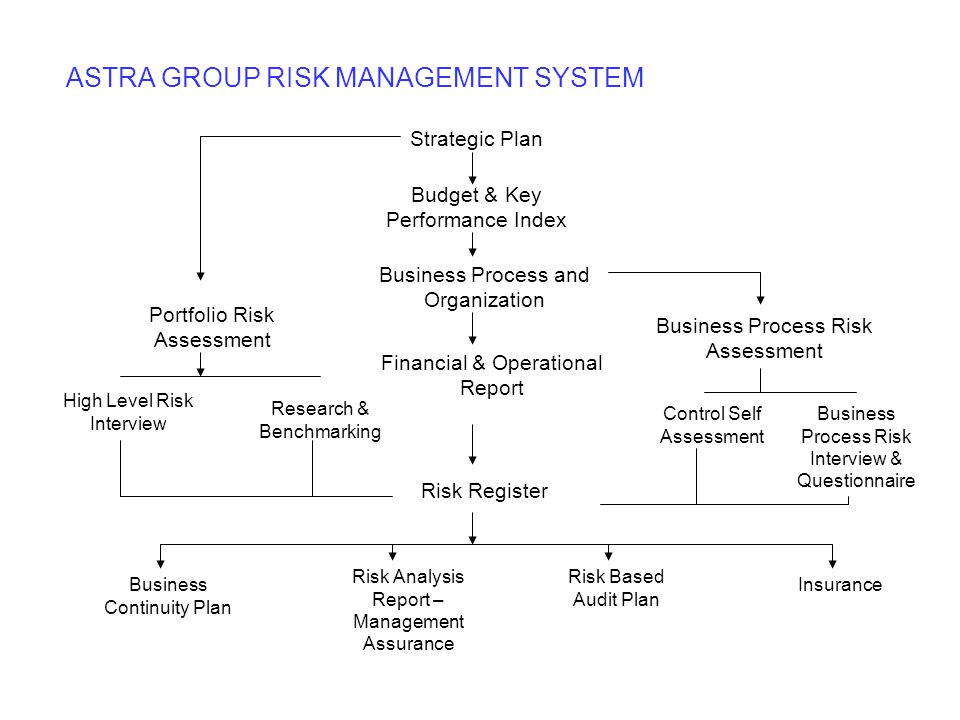 ASTRA GROUP RISK MANAGEMENT SYSTEM
