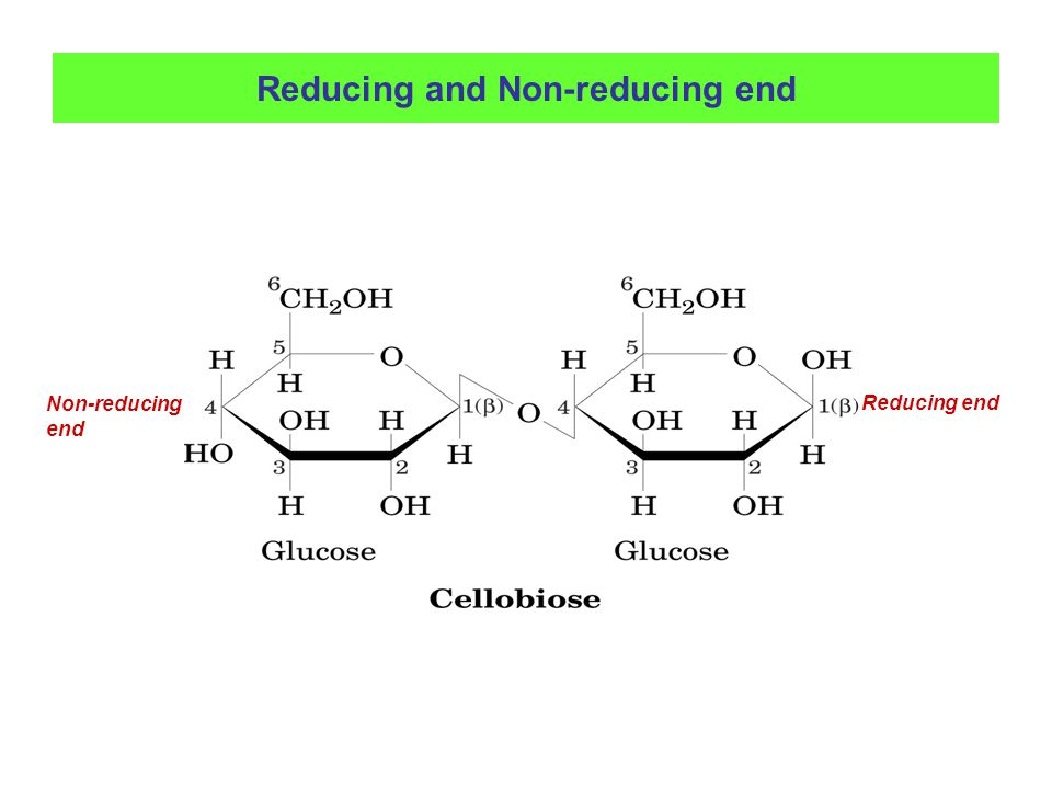 Reducing and Non-reducing end