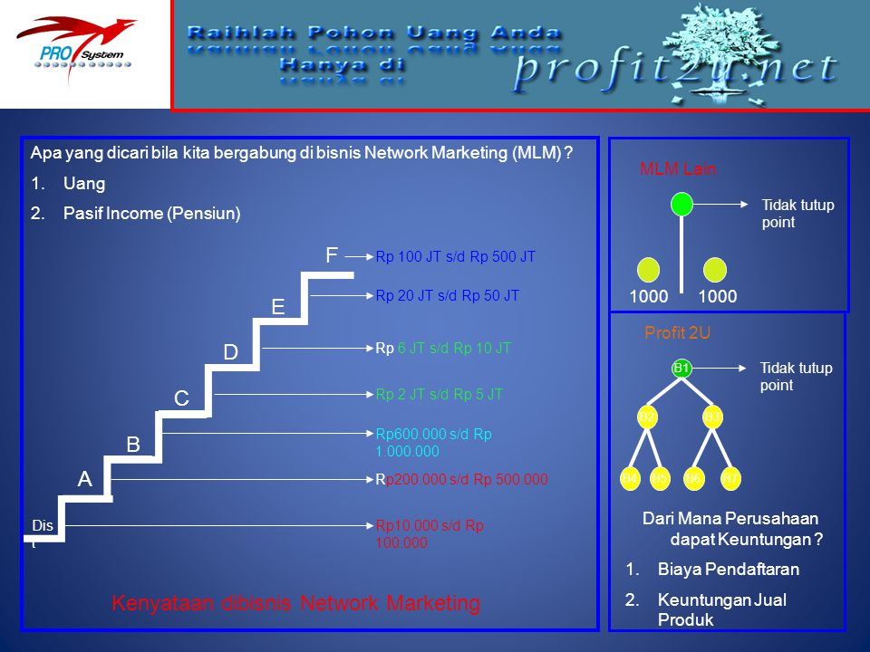 Kenyataan dibisnis Network Marketing