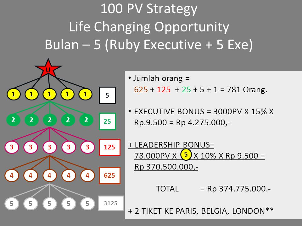 Life Changing Opportunity Bulan – 5 (Ruby Executive + 5 Exe)