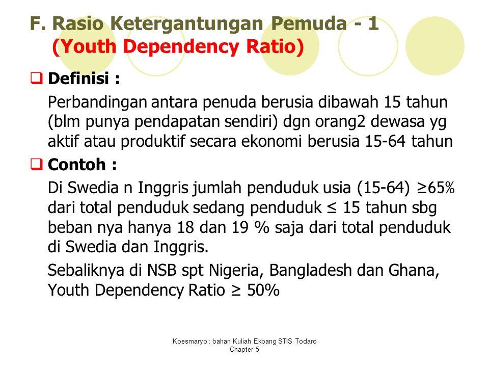 F. Rasio Ketergantungan Pemuda - 1 (Youth Dependency Ratio)