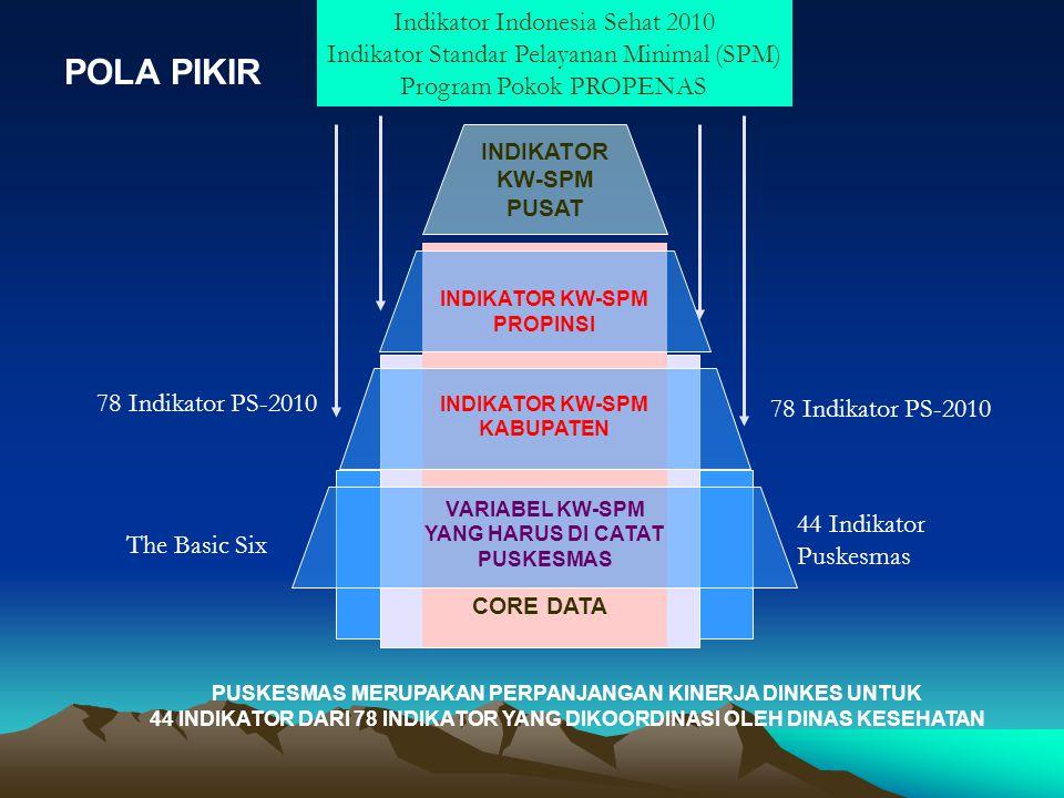 POLA PIKIR Indikator Indonesia Sehat 2010