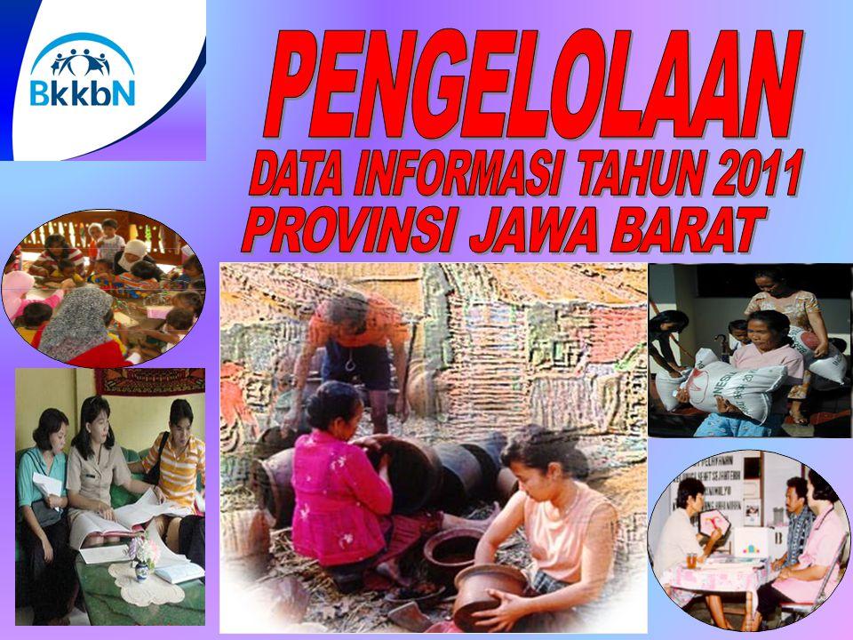 PENGELOLAAN DATA INFORMASI TAHUN 2011 PROVINSI JAWA BARAT