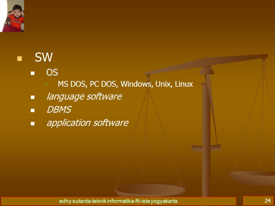 SW OS language software DBMS application software