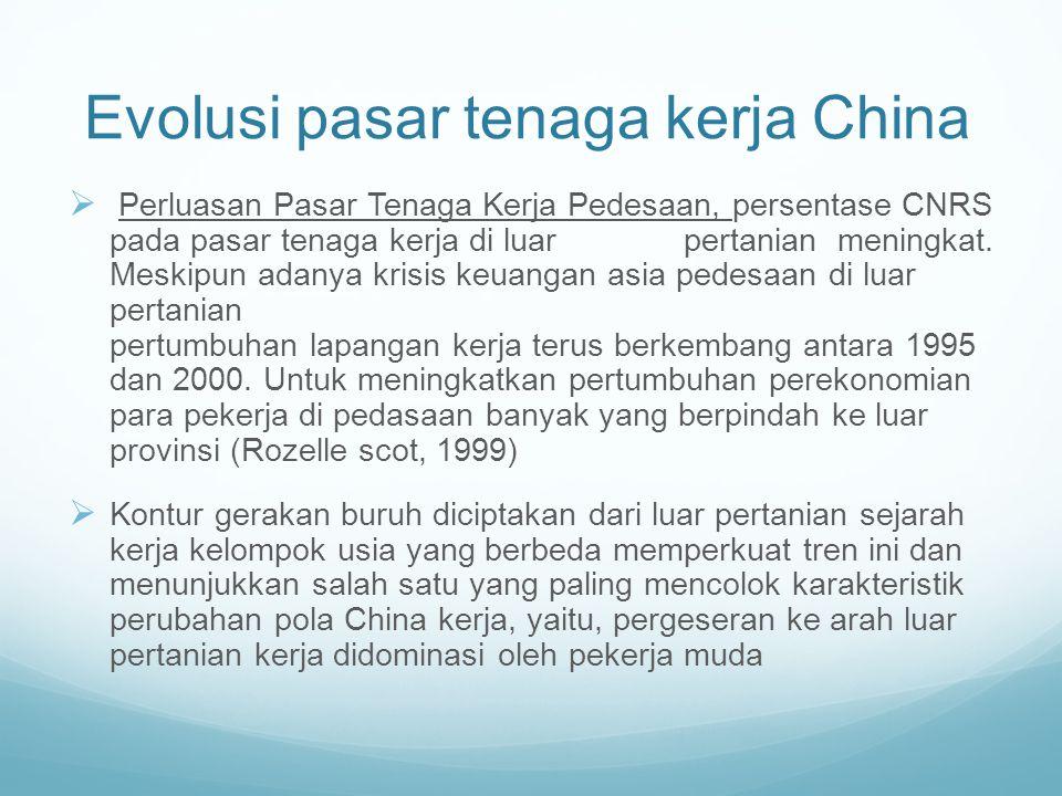 Evolusi pasar tenaga kerja China
