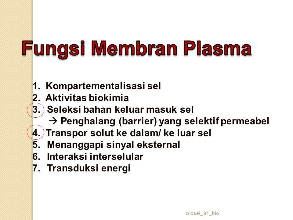 Fungsi Membran Plasma 1. Kompartementalisasi sel 2. Aktivitas biokimia