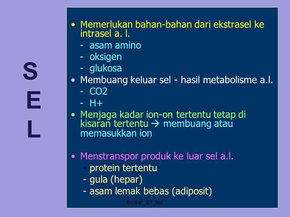 S E L Memerlukan bahan-bahan dari ekstrasel ke intrasel a. l.