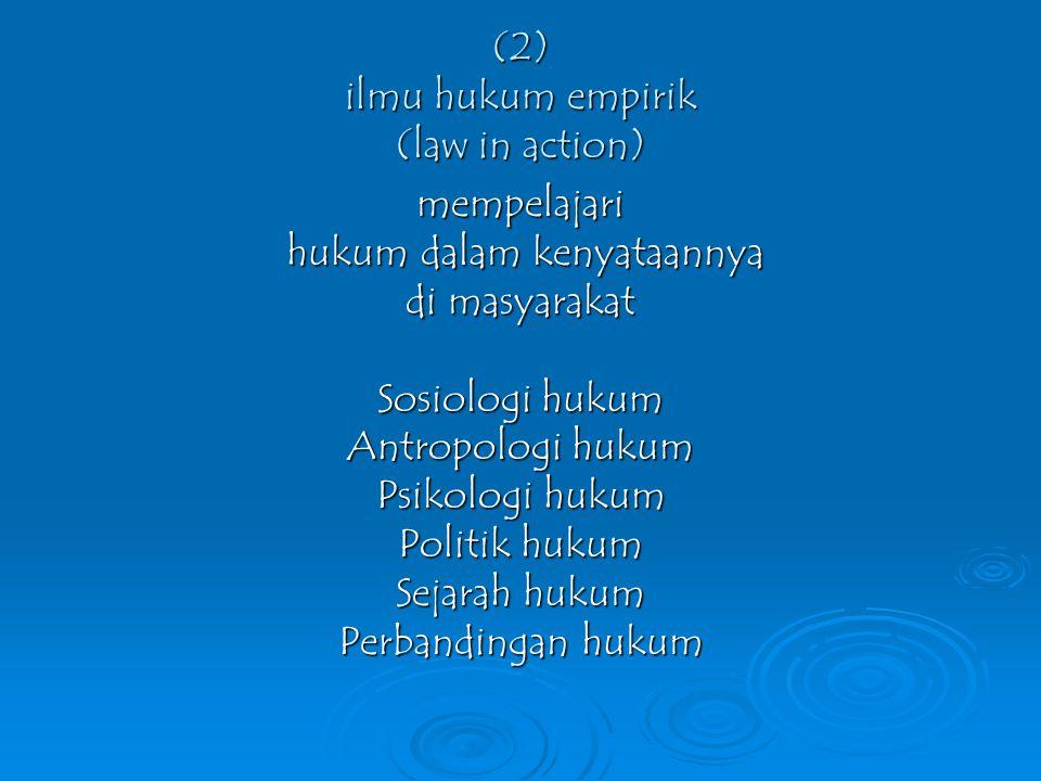 (2) ilmu hukum empirik (law in action)
