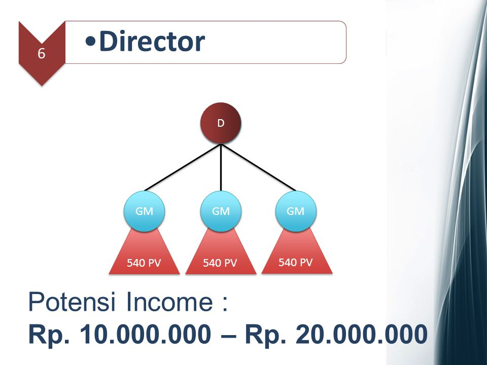 Director Potensi Income : Rp. 10.000.000 – Rp. 20.000.000 6 D GM Spv