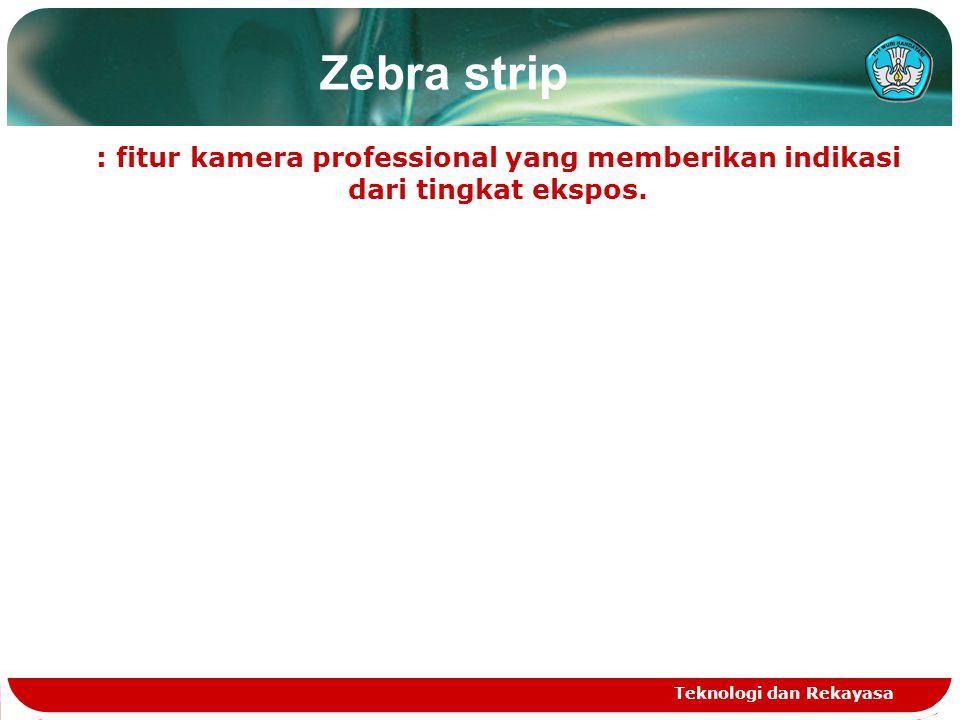 Zebra strip : fitur kamera professional yang memberikan indikasi dari tingkat ekspos.