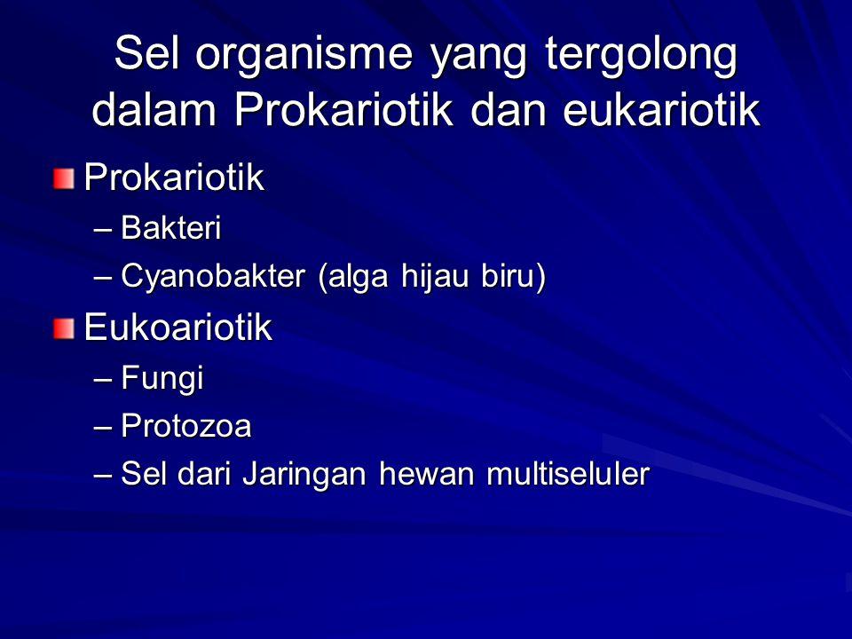 Sel organisme yang tergolong dalam Prokariotik dan eukariotik