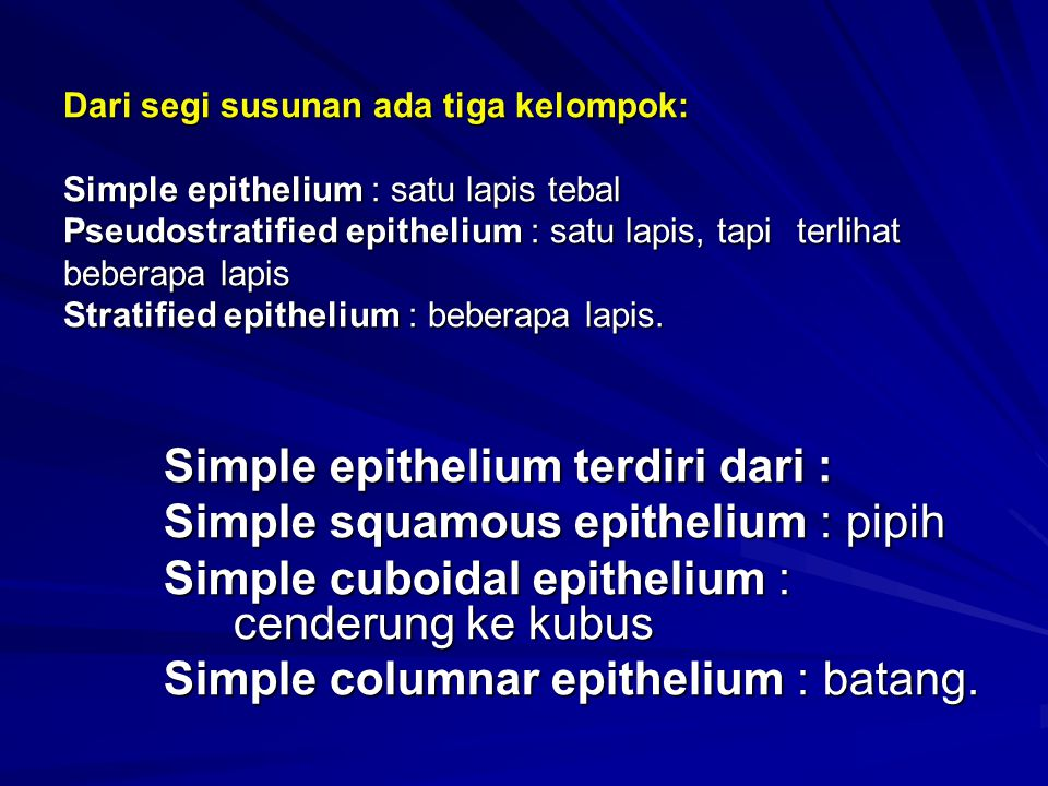 Simple epithelium terdiri dari : Simple squamous epithelium : pipih